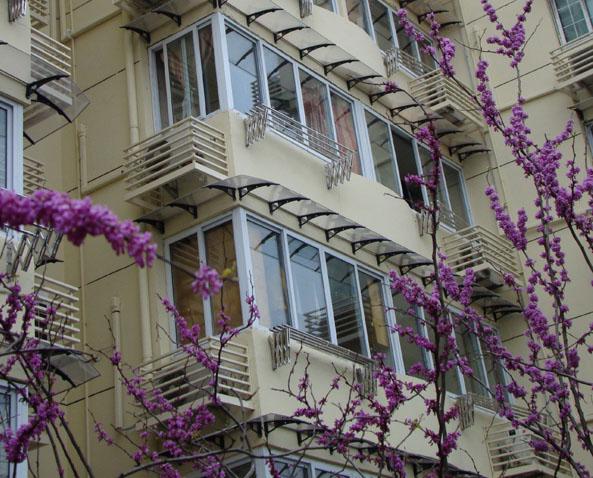 The Tweed Series Window Awnings